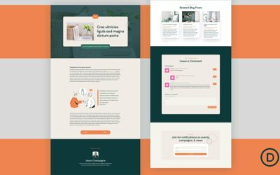 Download a FREE Blog Post Template for Divi's NGO Layout Pack